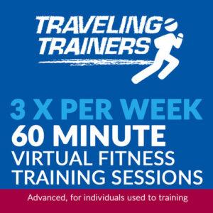 3x Per Week 60 Minute Virtual Training
